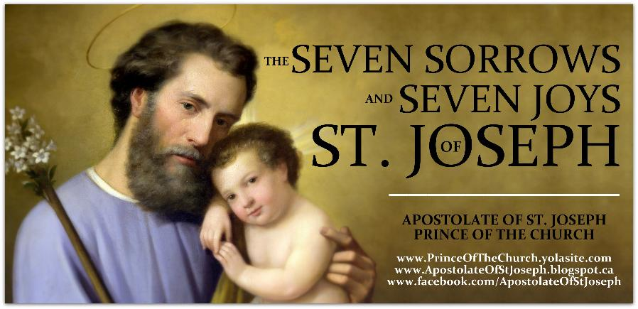 sorrows and joys of st joseph banner.jpg.opt898x435o0,0s898x435