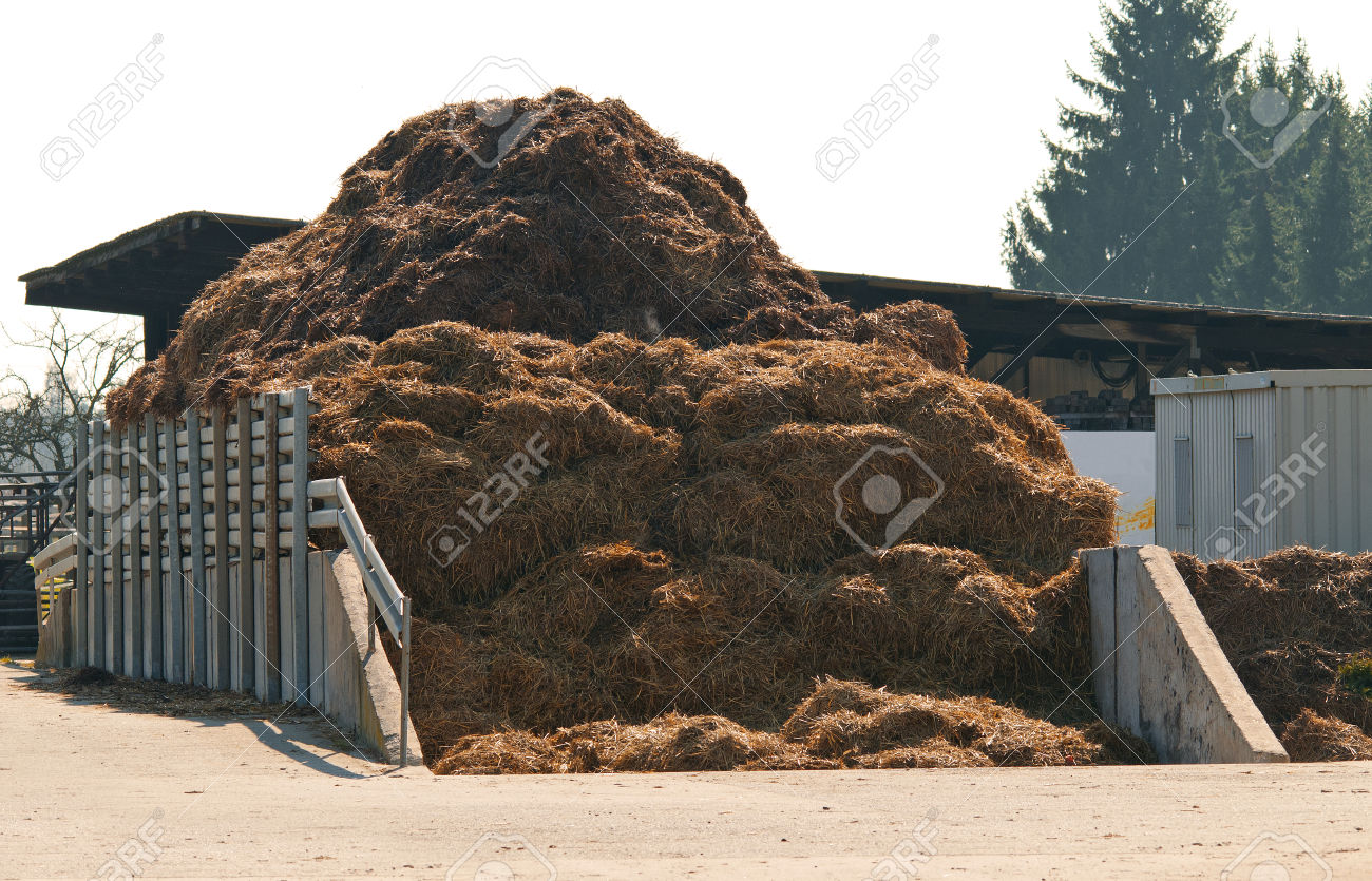 41292713-Dungheap-dunghill-muckheap-bog-hole-manure-pile-muck-hill-Stock-Photo