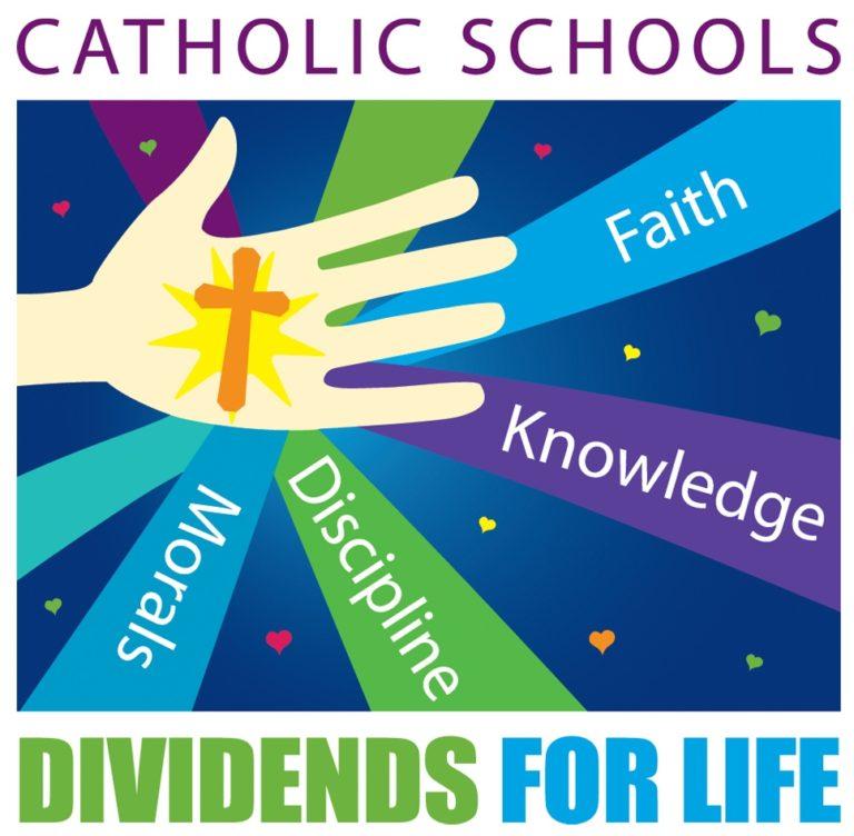 catholic schools week a + america essay