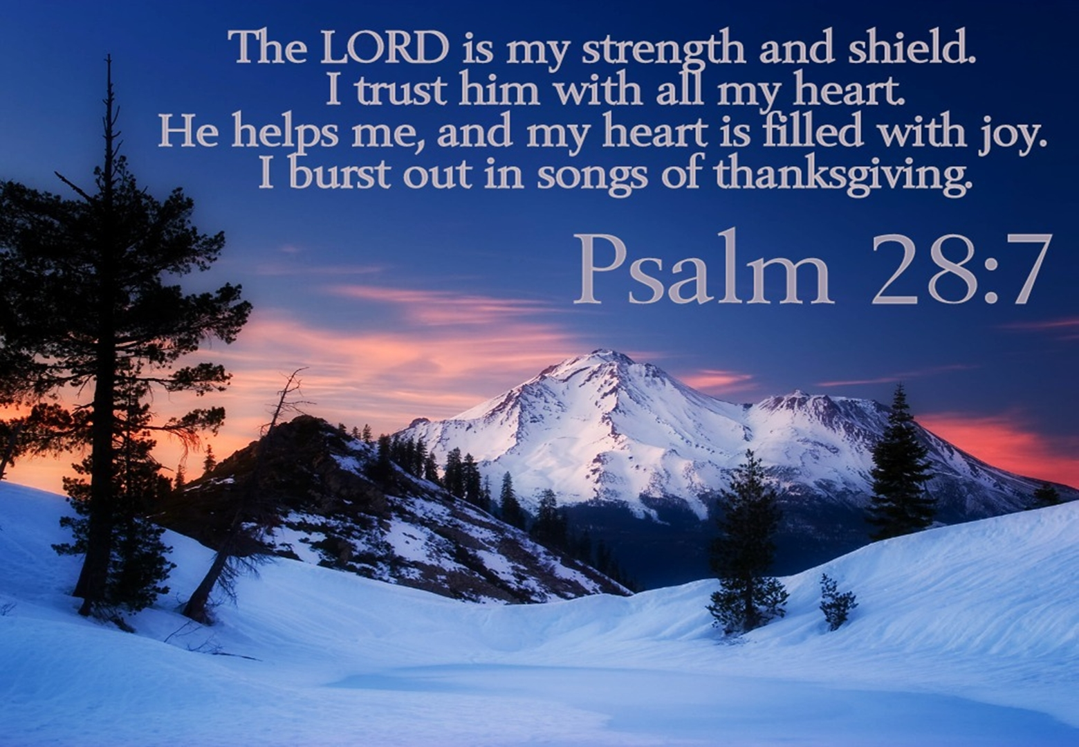 Psalm 28 | ADULT CATECHESIS & CHRISTIAN RELIGIOUS LITERACY